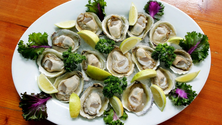Generic Oysters