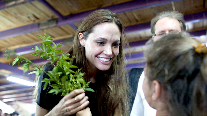 People Angelina Jolie