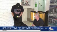 New Jersey Family Struck by COVID-19 Reunited With Dog