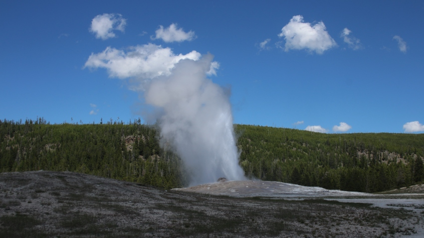 Ny Man Gets Ban From Yellowstone National Park After Walking