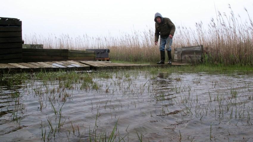 Sea Level Rise Back Bays