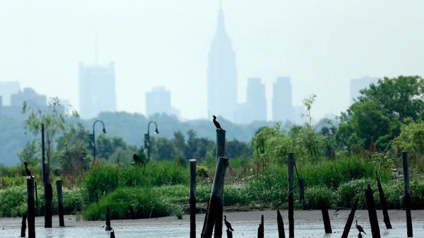 Superstorm Sandy Coastal Marshes
