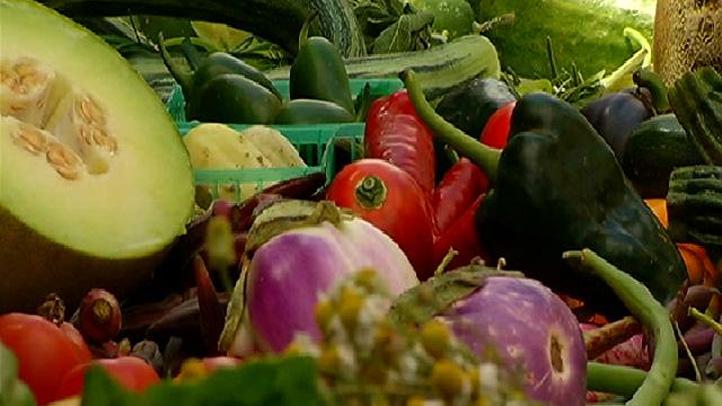Healthy-Food-01006