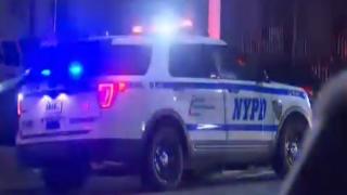 NYPD carro
