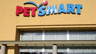 PetSmart Deliv Shoot