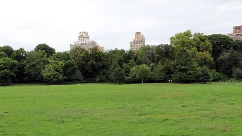 Prospect Park Generic V3 Resized