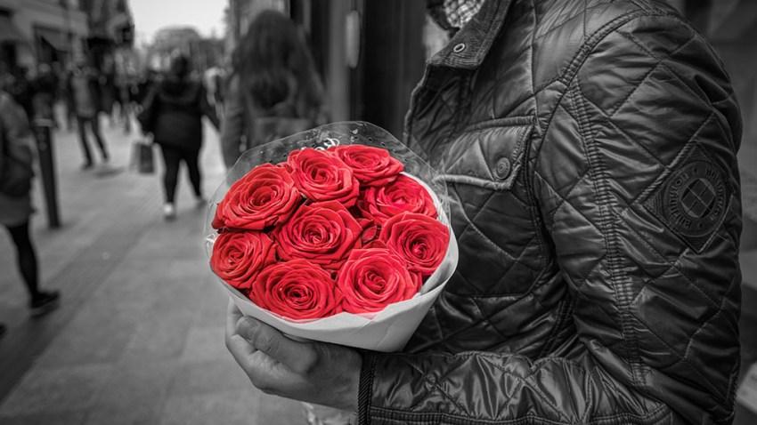 Roses_27