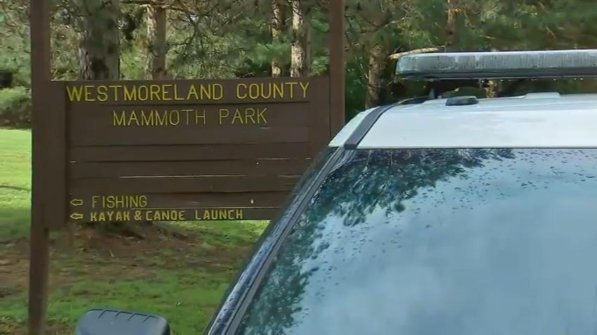 Teens Struck Branch Lightning Mammouth Park