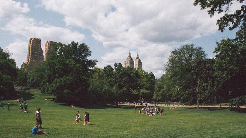 architecture-buildings-central-park