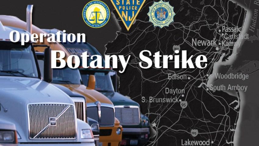 botany strike1