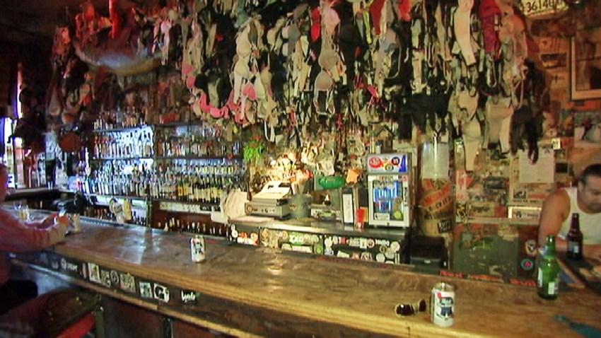 hogs heifer bar