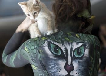 kittens23