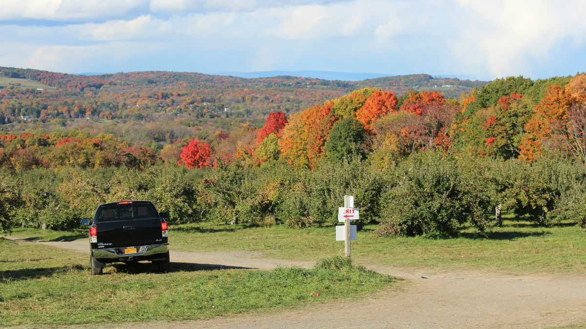11 Places To Go Apple Picking With The Family In The Tri State