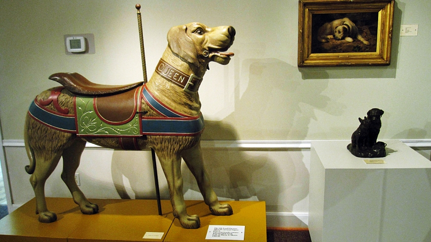 Travel-Trip-Dog Museum