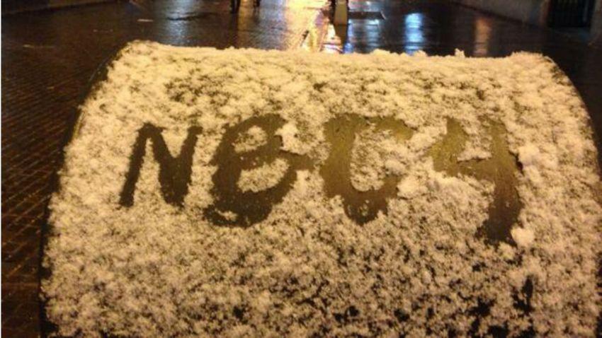 nbc in snow crop