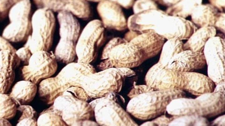 peanuts_722x406_2151846599.jpg