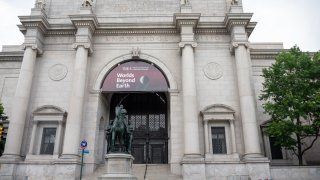 New York City's American Museum of Natural History