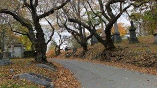 Green-Wood Cemetery in Brooklyn New York