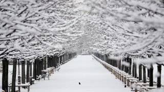 In this Feb. 7, 2018, file photo, the snow covered Tuileries garden are pictured following heavy snowfall in Paris.