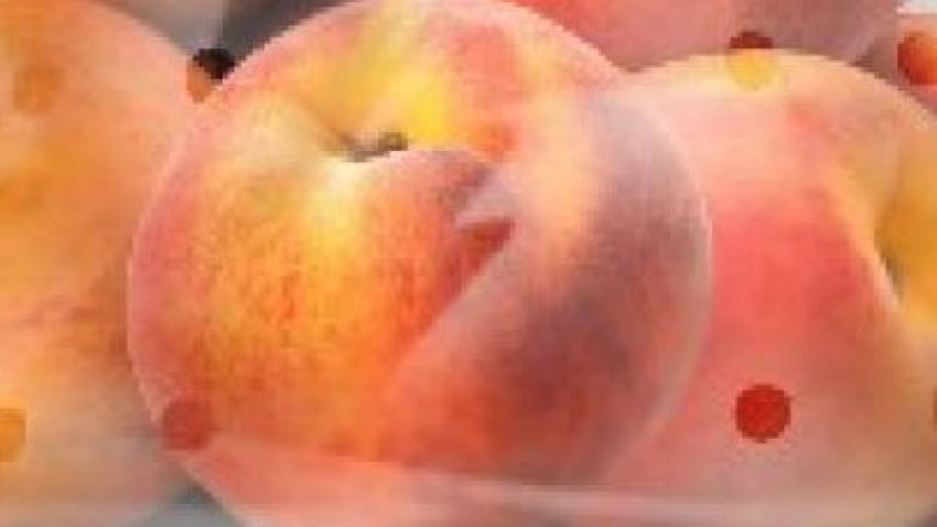salmonella peaches