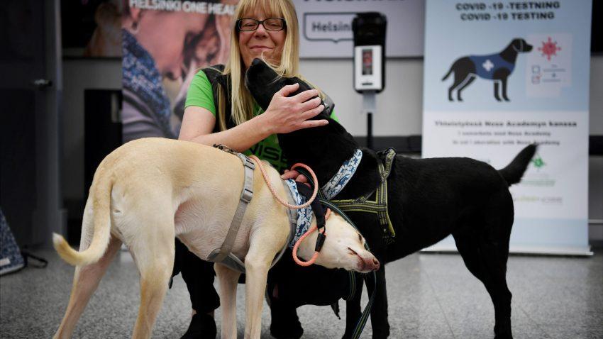 The coronavirus sniffer at at the Helsinki airport in Vantaa, Finland