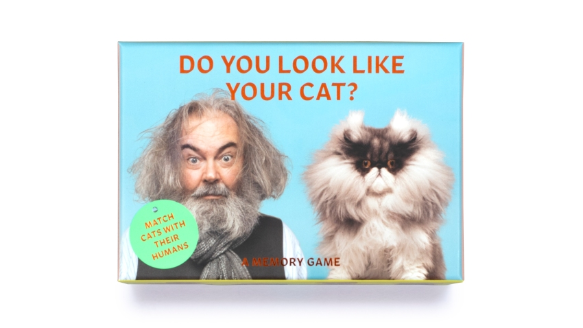 "This image shows ""Do You Look Like Your Cat?"" a card memory game"