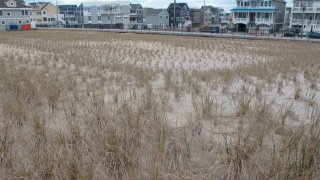 Jersey Shore homes with protective dune