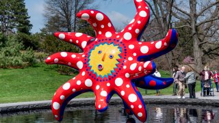 Art display at NY Botanical Gardens