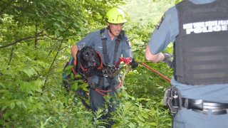 Police retrieve a dog that fell into a gorge in Letchworth State Park.