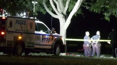 11-Year-Old Among 4 Shot in Bronx Park