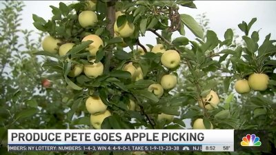 Produce Pete Goes Apple Picking