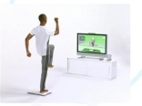 Wii Fit or Fat?