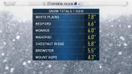 <b>More New York Snow Totals</b>