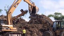 Puerto Rico Turning Maria Debris Into Mulch