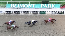 Worker May Have Died from Hantavirus Before Belmont Stakes