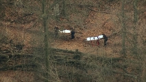 Girl, 10, Mysteriously Found in NJ Woods; Mom, Cops Swarm