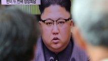 North Korea Also Has Chemical Weapons, Expert Warns