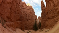 Google Launches Virtual Tours for National Parks Centennial