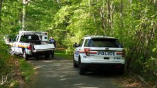 Body Found at Massapequa Preserve May Be MS-13 Victim: Cops
