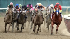 New Jersey OKs $20M Subsidy for Horse Racing Industry