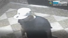 Attacker Who Tried to Rape 74-Year-Old Woman Arrested: NYPD