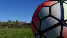 Teen Attacked While Playing Soccer on Long Island: Police