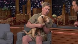 'Tonight': Fallon Gets Attacked by Robert Irwin's Anteater