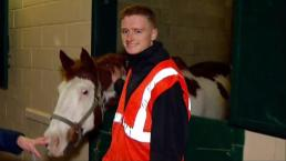 Volunteers Take Care of Horses at Del Mar Shelter