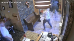 Oh Deer! Video Shows Deer Crashing Into Northwest Indiana Restaurant