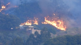 Thousands Evacuated From Wildfire on Canary Islands