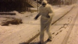 10 Questions With the Boston Yeti