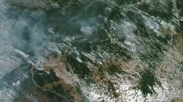 Bolsonaro Suggests NGOs Setting Amazon Fires, Gives No Proof