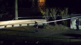 Jogger Raped in Lower East Side Park: NYPD