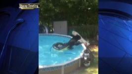 Stunned Family Watches Bear in Pool: 'He Popped Our Float!'